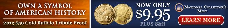 2013 gold buffalo coin